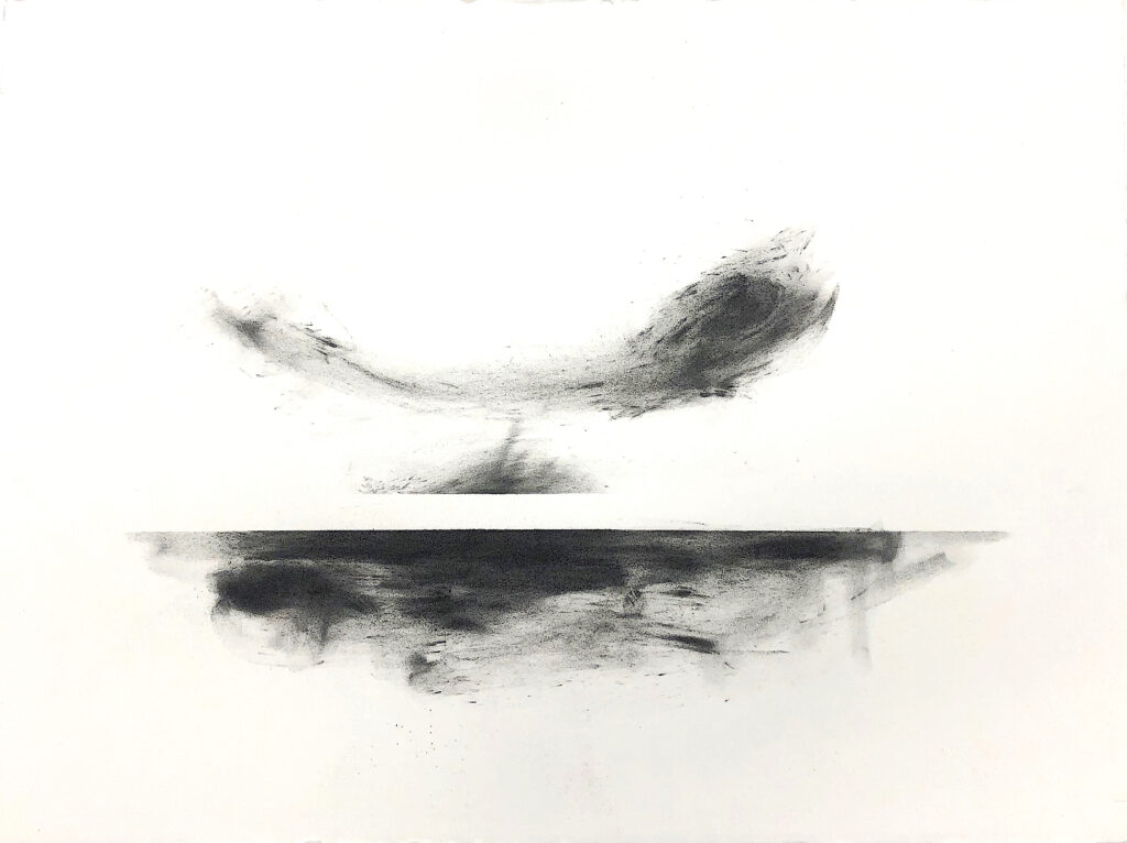 charcoal, drawing, arctic, black, white
